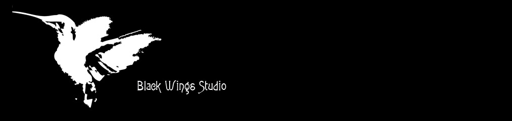 Black Wings Studio